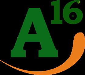 Аудиторская компания А16